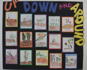 Photo of kid drawings of gardens
